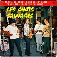 12-LES-CHATS-SAUVAGES-Toi-Tu-Es-Bath-Pour-Moi
