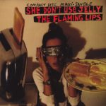 06-THE-FLAMING-LIPS-She-Don't-Use-Jelly