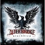 21-ALTER-BRIDGE-Blackbird